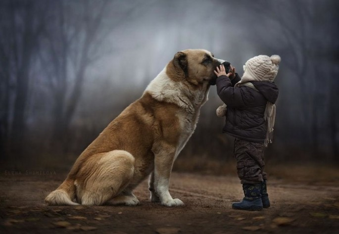 Boys-and-Their-Animals01-685x473
